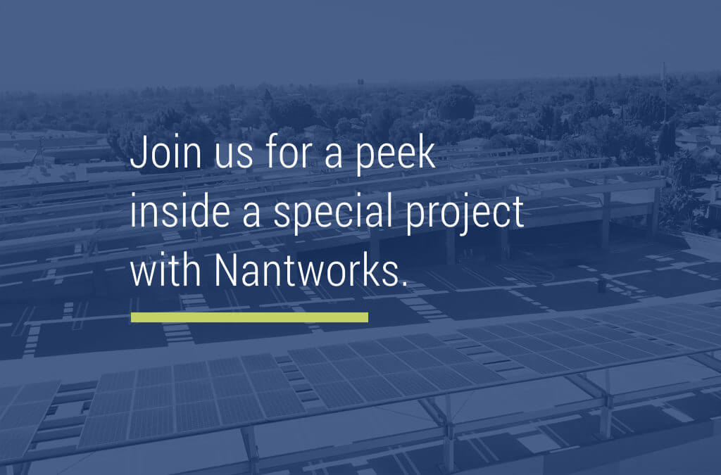 Special Project Highlight: Nantworks