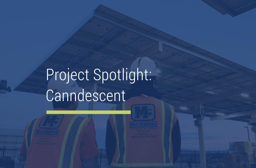 Project Spotlight: Canndescent